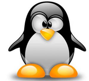 linux ижевск